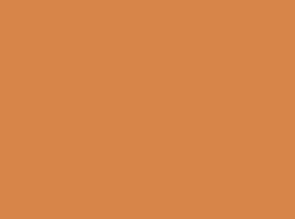 citrus-orange